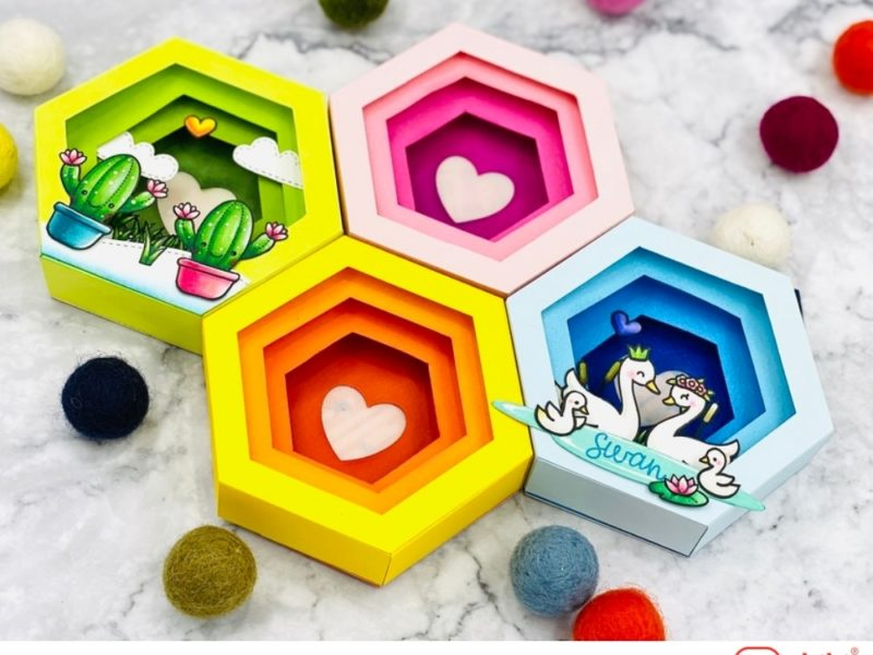 Hexagonal Shadow Box