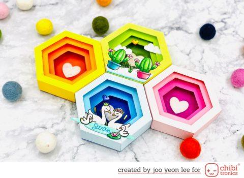 Hexagonal Shadow Box