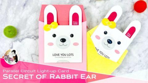 Secret of Rabbit Ear